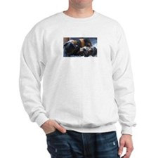 'Sonja' Sweatshirt