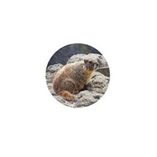 Marmot Mini Button