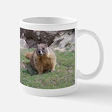 Marmot Mugs