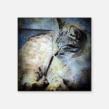 "Sleepy Kitty Square Sticker 3"" x 3"""