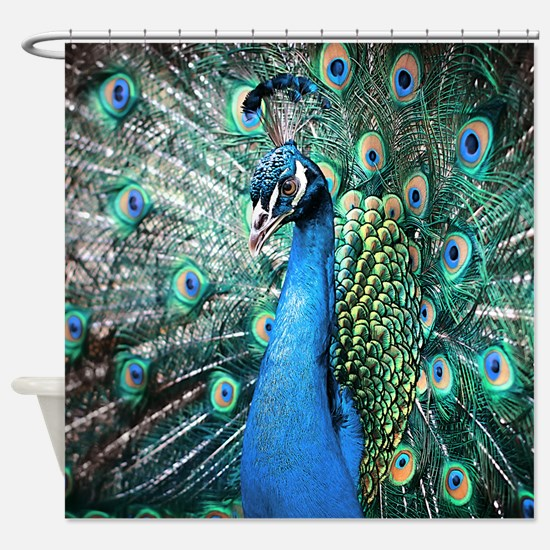Peacock color curtains