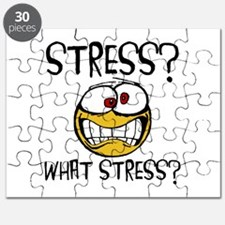 What Stress Puzzle