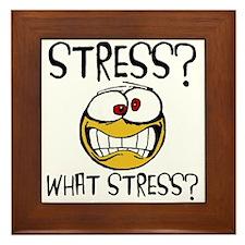 What Stress Framed Tile