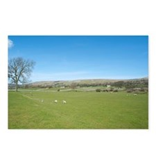 spring in wensleydale Postcards (Package of 8)