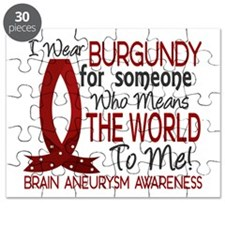 Brain Aneurysm MeansWorldToMe1 Puzzle