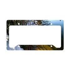 Reflective Shadow License Plate Holder