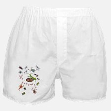 Unique Bugs and insects Boxer Shorts