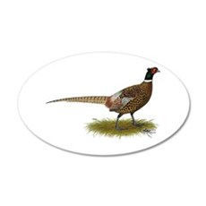 Ringneck Pheasant Afield Wall Decal