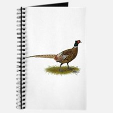 Ringneck Pheasant Afield Journal