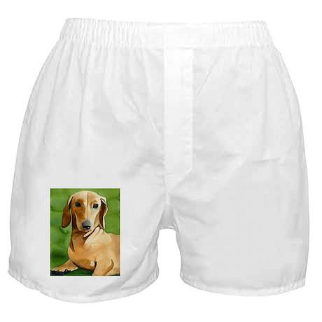 Dachshund Stuff! Boxer Shorts