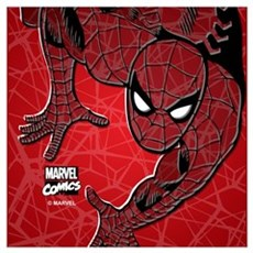Spiderman Wall Art Poster