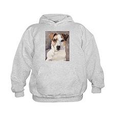 Jack Russell Terrier Stuff! Hoodie