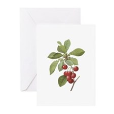 Vintage Cherries Greeting Cards (Pk of 10)