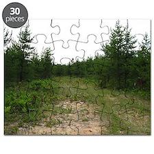 michigan U.P. forrest Puzzle