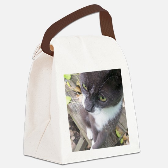 grey autumn cat Canvas Lunch Bag