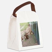 Elk and reindeer in Michigan Canvas Lunch Bag