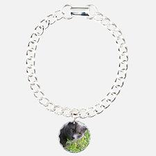 Garden Cat Bracelet
