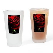 Red Rose of Love on Black Velvet Drinking Glass