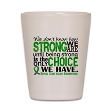 Spinal Cord Injury HowStrongWeAre1 Shot Glass