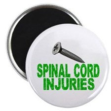 Screw Spinal Cord Injuries 1 Magnet