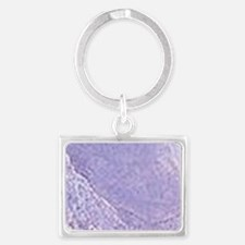 Maxfield Parrish Daybreak Keychains