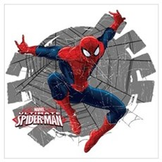 Spiderman Web Wall Art Poster
