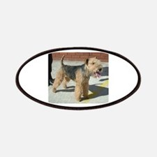 lakeland terrier full Patches