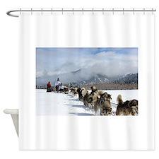New Snow Shower Curtain