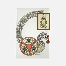 Celtic Shield Dragon  Rectangle Magnet