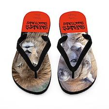Safari Flip Flops