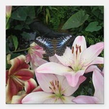 "Butterfly on a Flower Square Car Magnet 3"" x 3"""