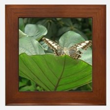 Butterfly on a Plant Framed Tile
