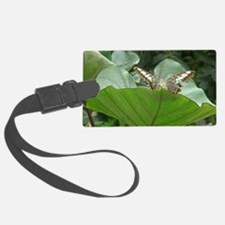 Butterfly on a Plant Luggage Tag