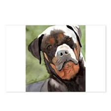 Rottweiler Gifts! Postcards (Package of 8)