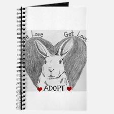 Rabbit Rescue Adoption Journal