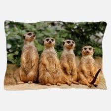Meerkat-Quartett 001 Pillow Case