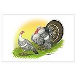 Narragansette Turkey Pair Large Poster