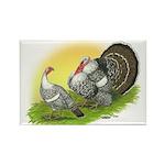 Narragansette Turkey Pair Rectangle Magnet (100 pa