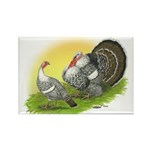Narragansette Turkey Pair Rectangle Magnet (10 pac