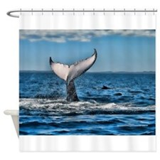 Whale Tail 1 Shower Curtain