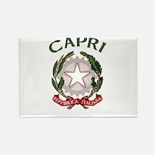 Capri, Italy Rectangle Magnet (10 pack)