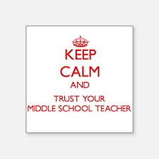 Keep Calm and trust your Middle School Teacher Sti