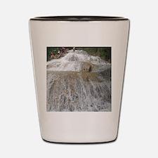 Dunn's River Falls Shot Glass