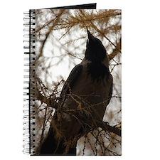 Kiev Crow Journal