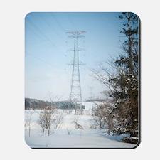winter power Mousepad