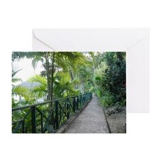 Road to Paradise Greeting Card