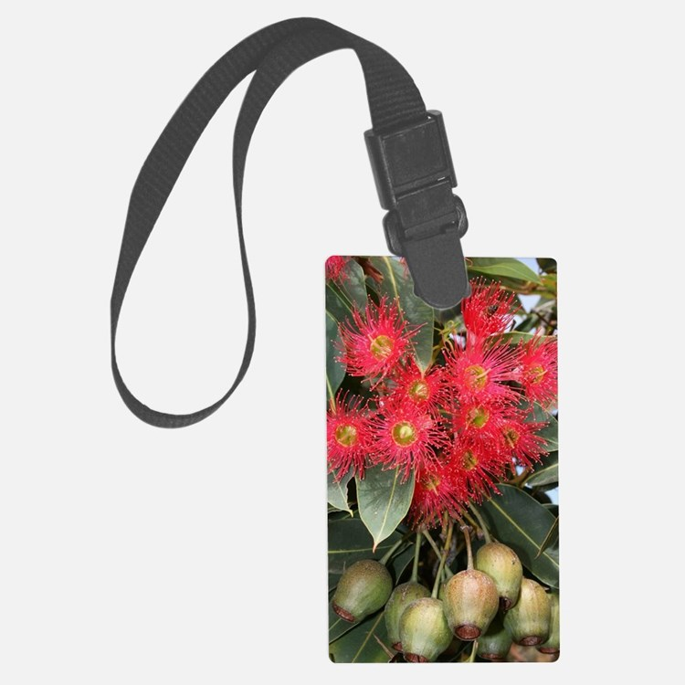 Red Flowering Gum Nuts in Austra Luggage Tag
