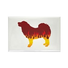 Mastiff Flames Rectangle Magnet (100 pack)