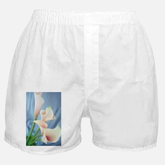 Lily Silk Parade Photo Boxer Shorts
