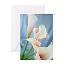 Lily Silk Parade Photo Greeting Cards